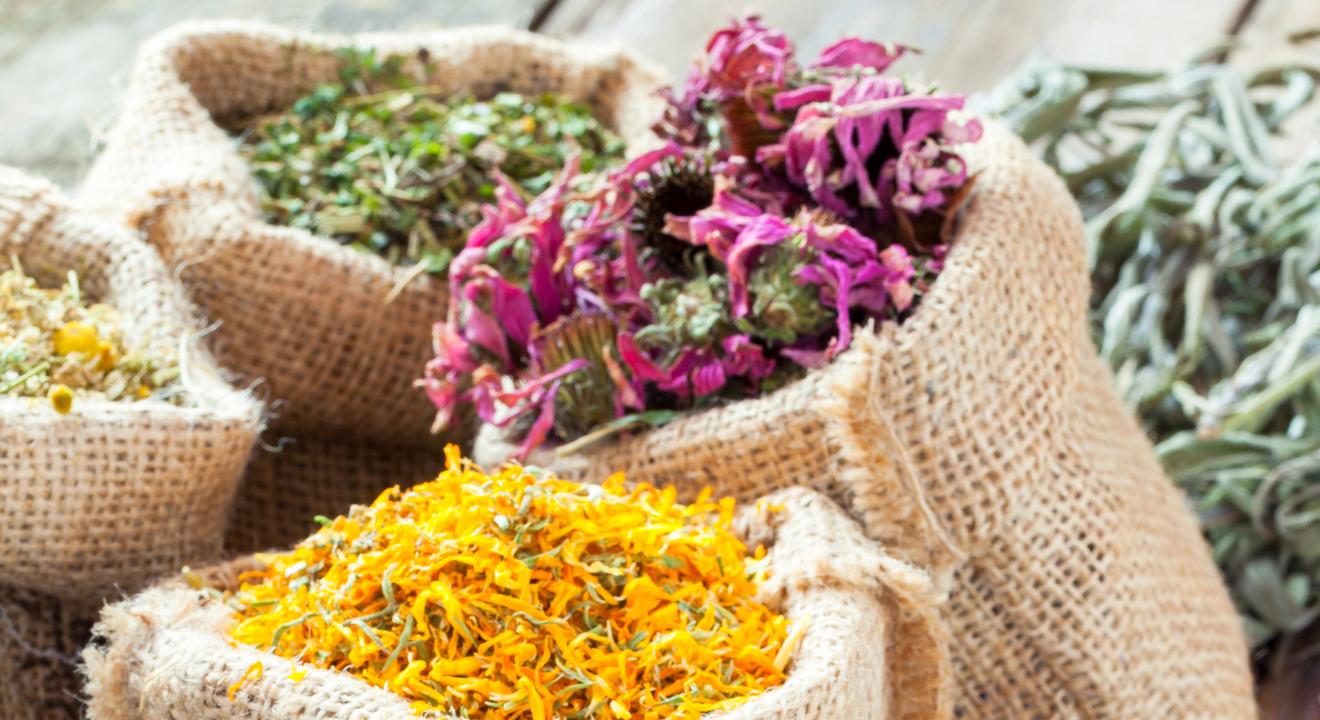 Photo de produits de phytothérapie